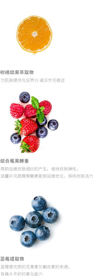 莓蔬发酵饮料关键配方